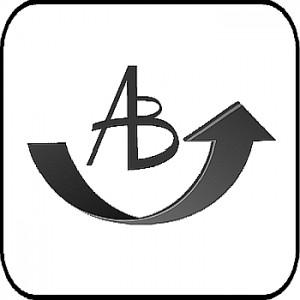 Transport Audit